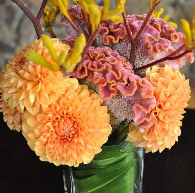 Fall Dahlias and Celosia