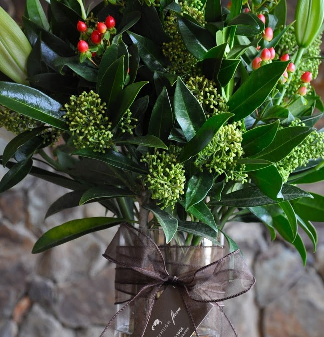 Skimmia, lilies and hypericum berries