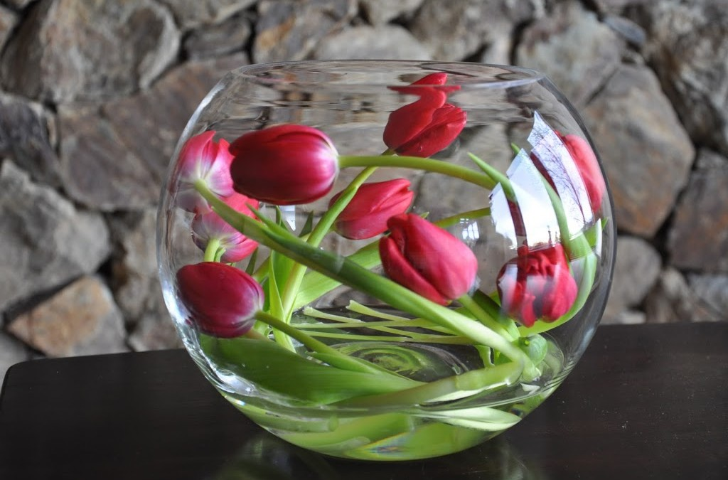 Twisted Tulips