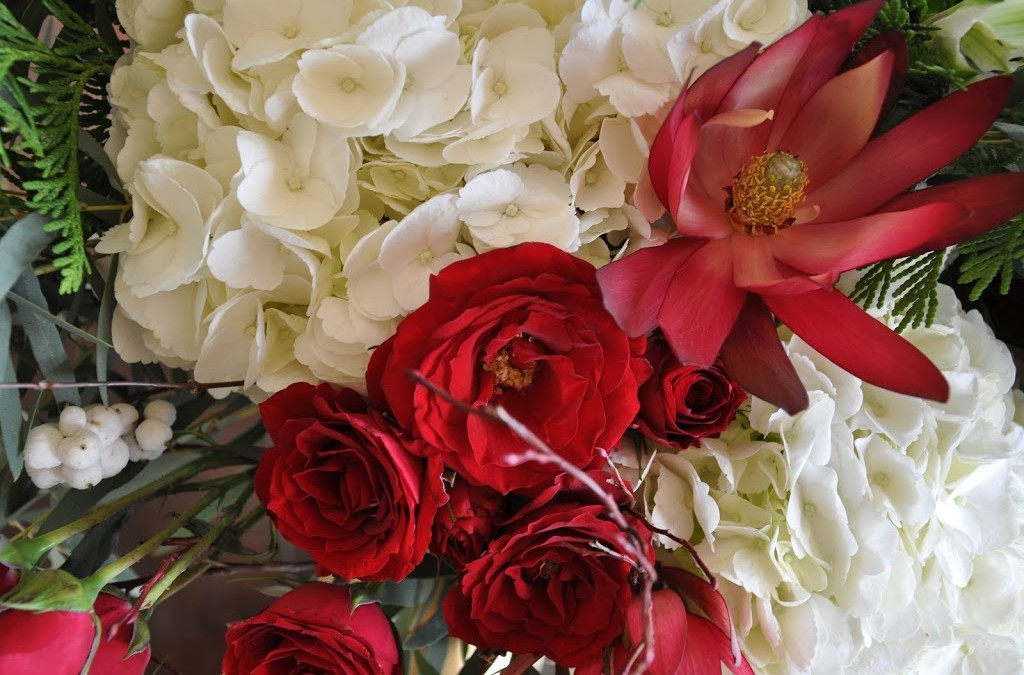 Winter flowers – white hydrangea and red roses