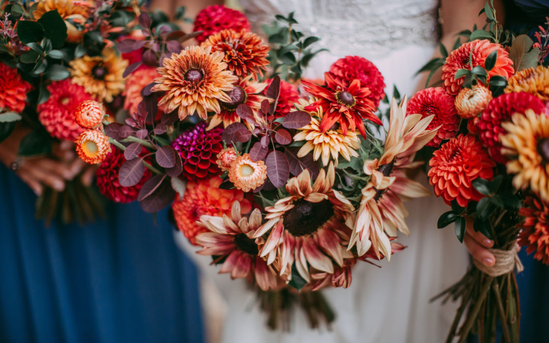 Colorful Summer Wedding on Salt Spring Island